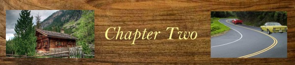 ZZZ2 - chapter header Chapter Two layers TAKE TWO FLAT.jpg