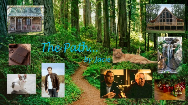 The Path Artwork - Flat banner jpg image.jpg