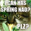 spring nao icon