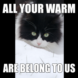 all your warm