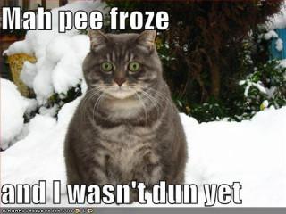 pee-froze