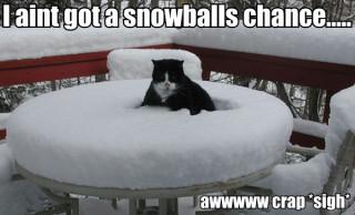 snowballs-chance