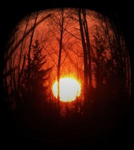 Солнце неспящих