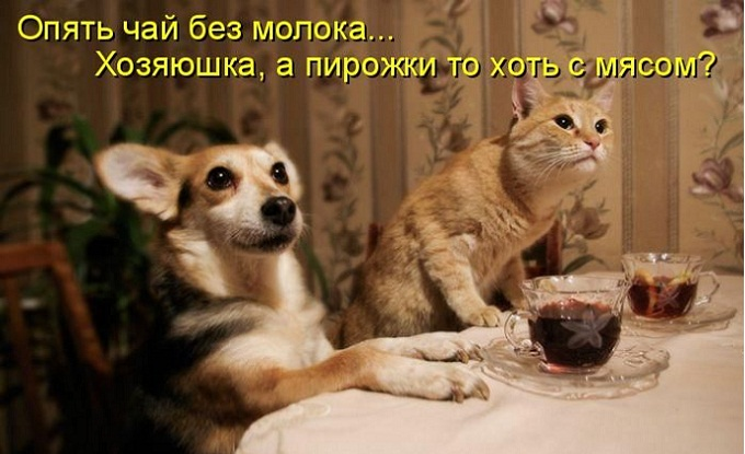 1305272142_kotomatrix_39