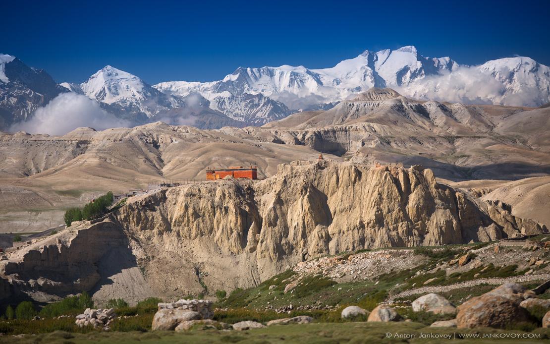 namgyal_monastery