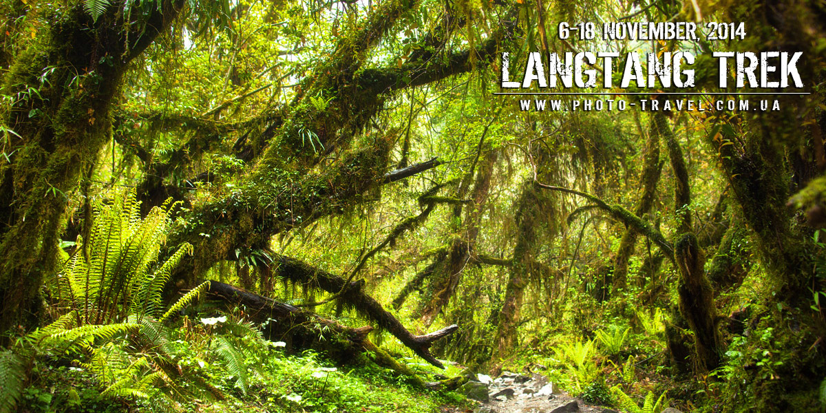 Lanrtang_trek_jungle_poster_big