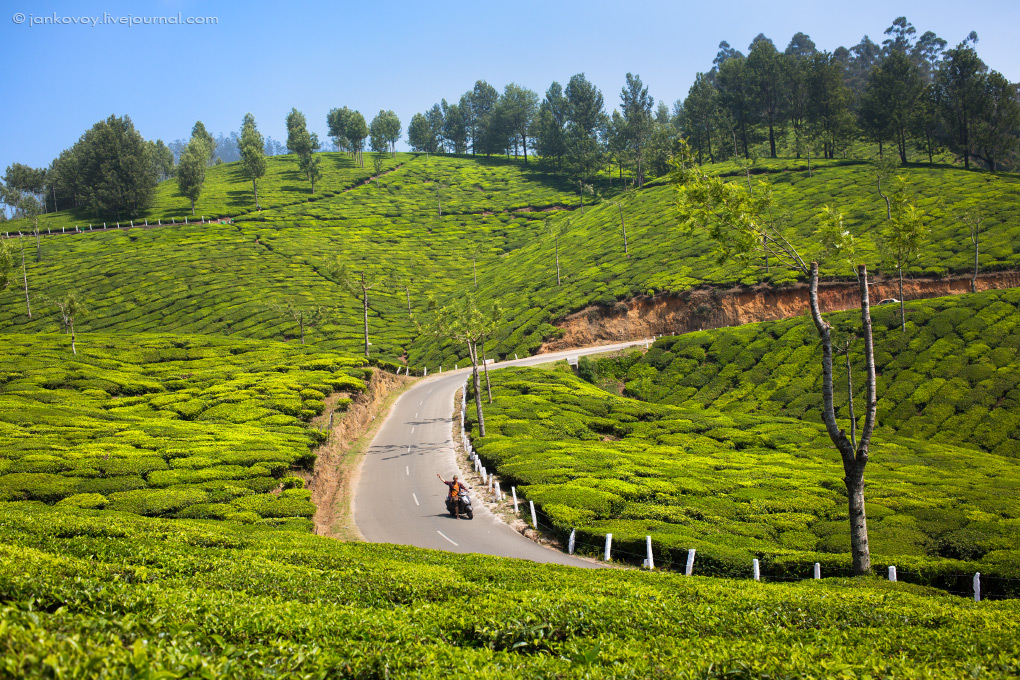 hello_from_munnar