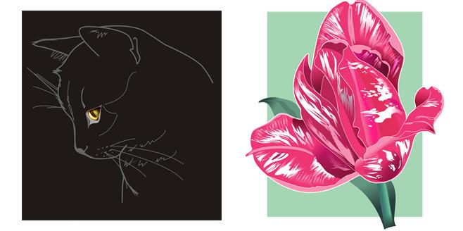 тюльпан_на фонедля_сайта