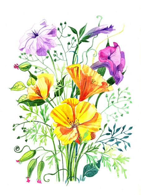 цветы 001_для_сайта