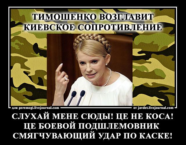 2014-04-15-тимошенко-возглавит-киевское-сопротивление
