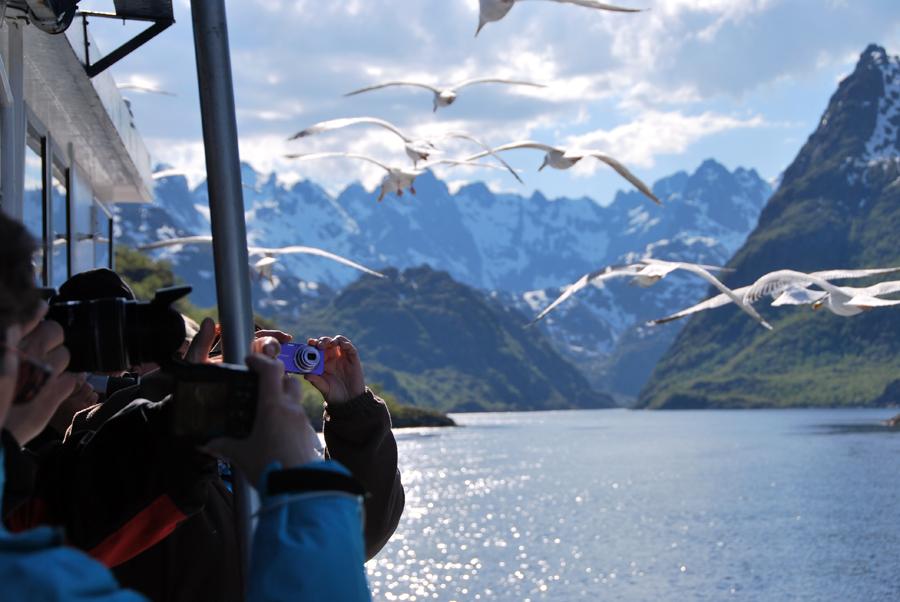 Trollfjord-0014