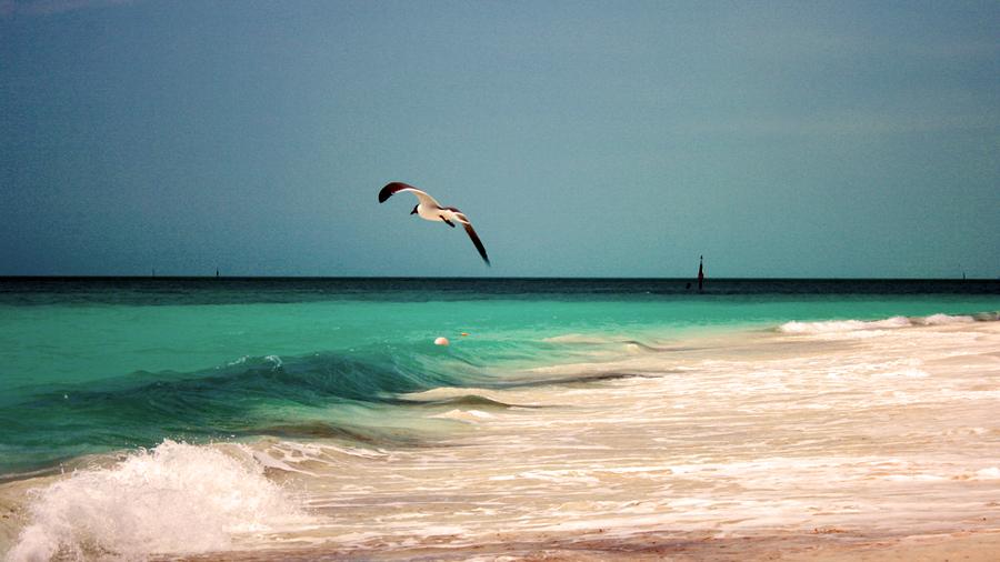 ТОП 5: Лучшие пляжи Кубы Cayo-Largo-del-Sur-001