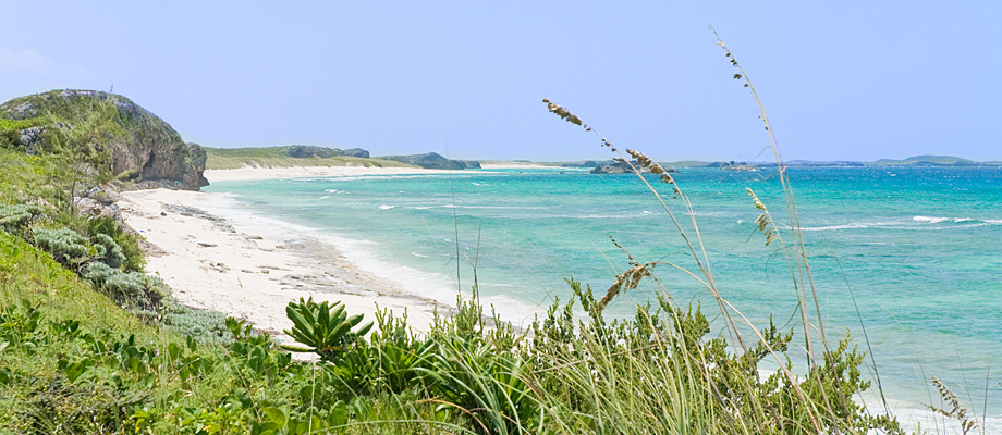 conch-bar-beach-middle-caicos