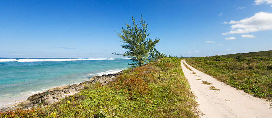 trail-bambarra-middle-caicos