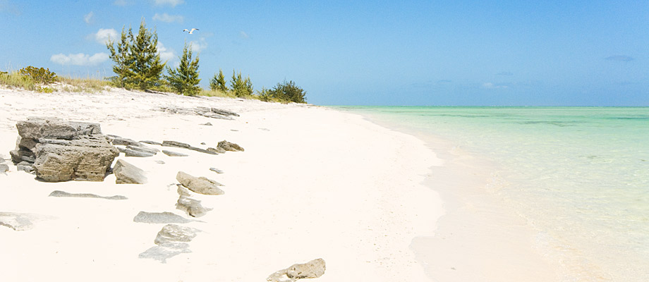 whitby-beach-north-caicos