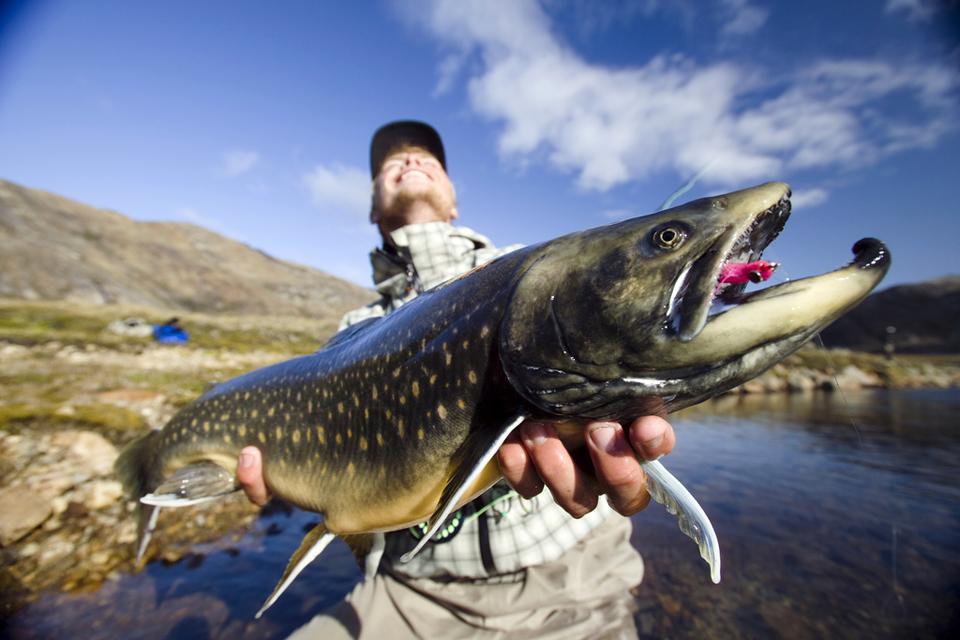 Greenland-fishing