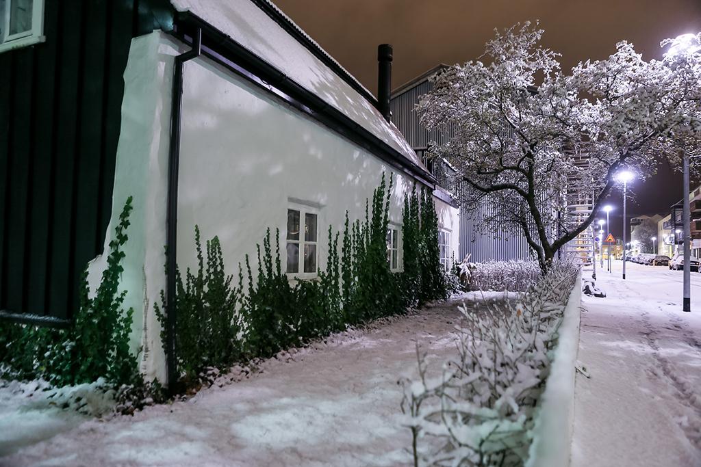 Reykjavik-005
