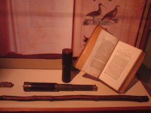 thoreaumuseum