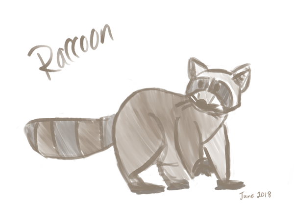 raccoon1.PNG