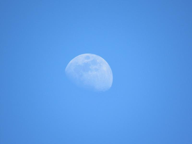 moon1 copy.jpg