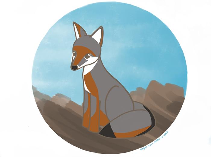 greyfox - small.PNG