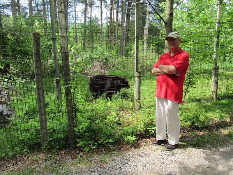 Dad-bear.JPG