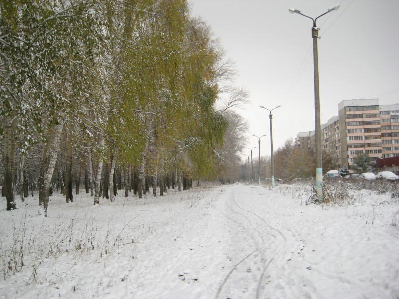 зима 011