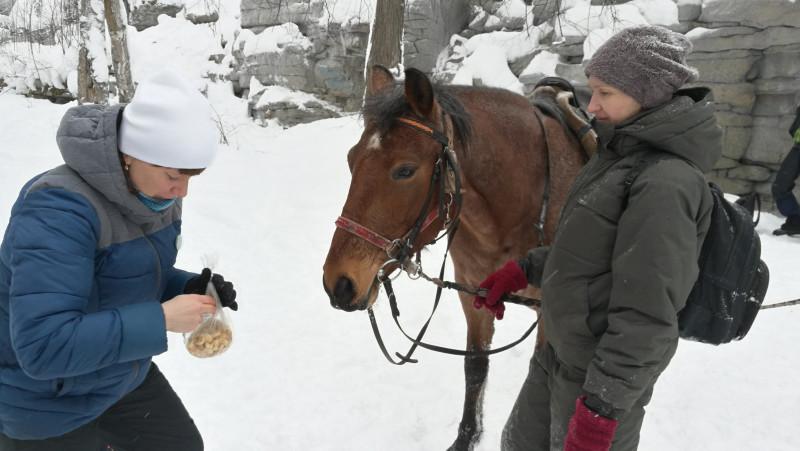 Эти сухарики бы хорошо пошли к вечернему пивку, но Элла решила, что коняшки любят сухари больше, чем туристы.