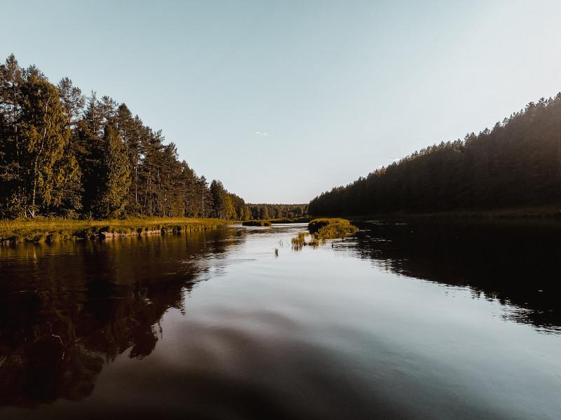 Фото Захара Рожкова.