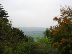 Polden Hills October 2012 038