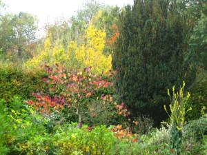 Chalice Well Garden October 2012 042