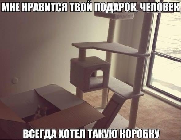 12166942_875214365902776_1938895536_n