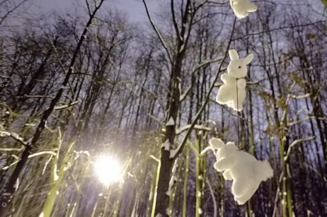 веселились в лесу при луне и высоко прыгали
