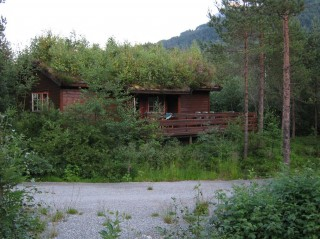 Охотничьи домики в лесу