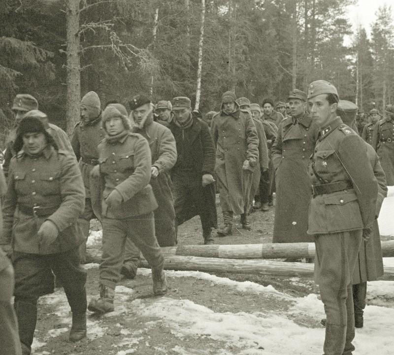 Реальные потери СССР в Советско - Финской войне.