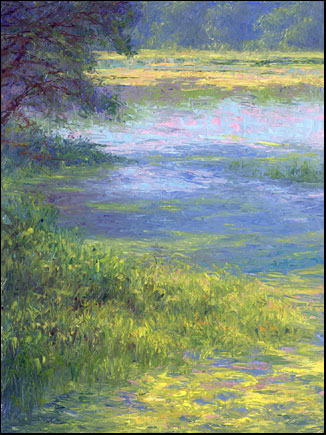 сорбэк 5-pond_summer_afternoon_fs
