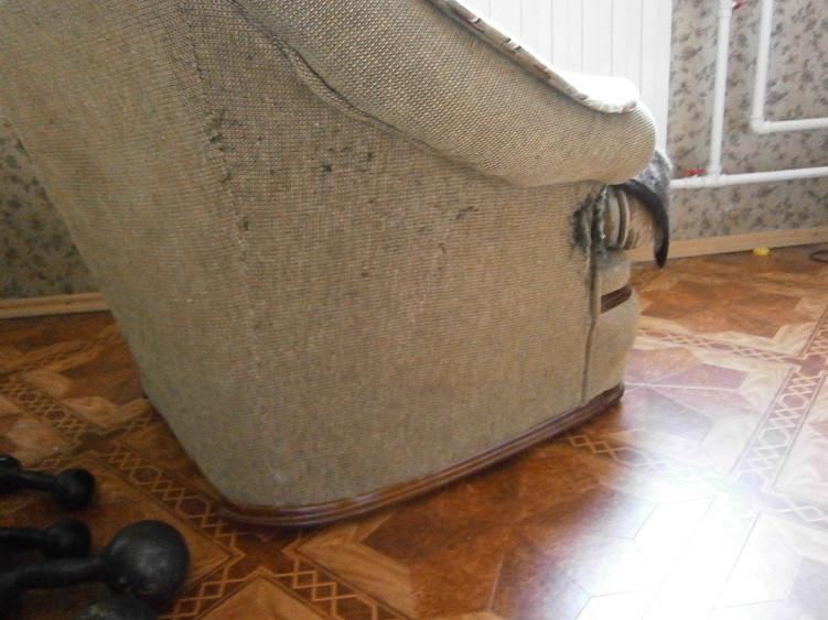 Сеть диванов