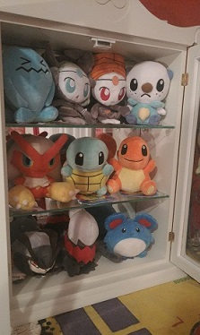More Pokedolls. Some of my favorites in here