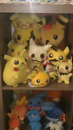 More Chu's and my Hoenn shelf.