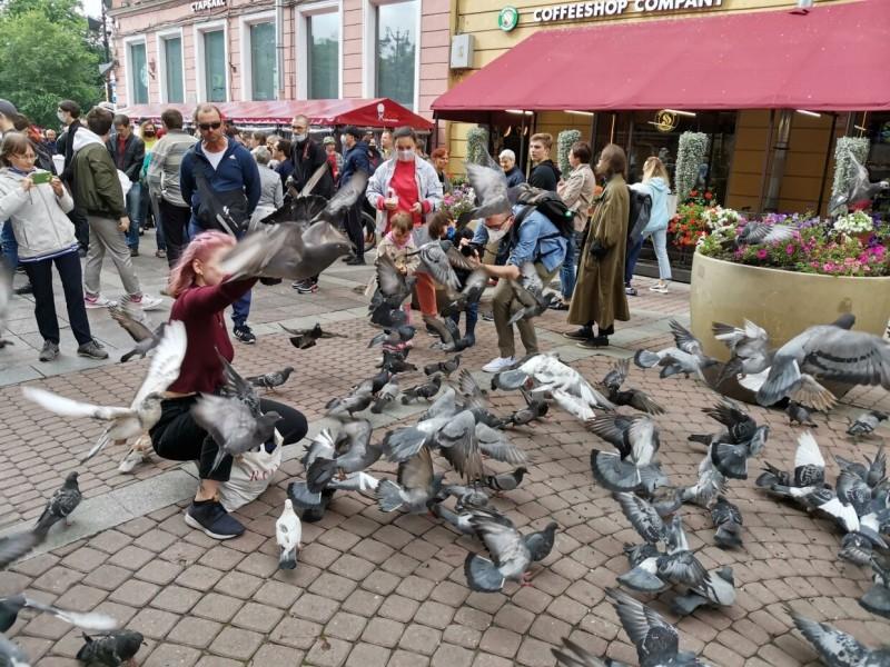 Не понять, кого поддержать: как «АгитРоссия» вышла на митинг в Петербурге
