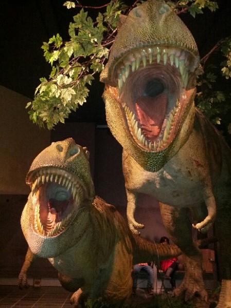 mon_74_pair_of_t-rexes1