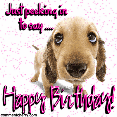 happy-birthday-dog-pictures-1