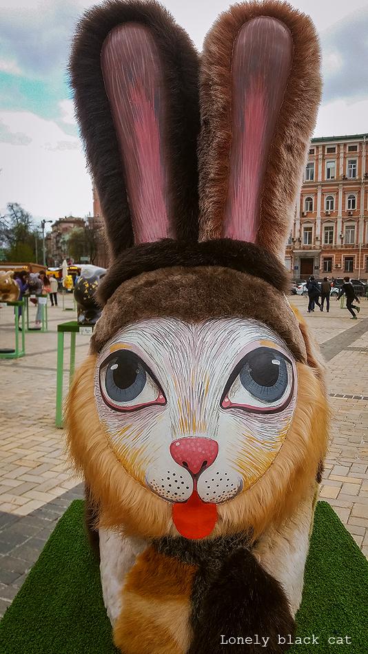 Eastern bunny lonelyblackcat photography