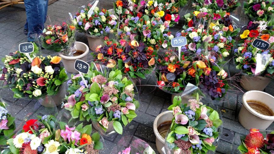 Доставка цветов амстердам москва, для