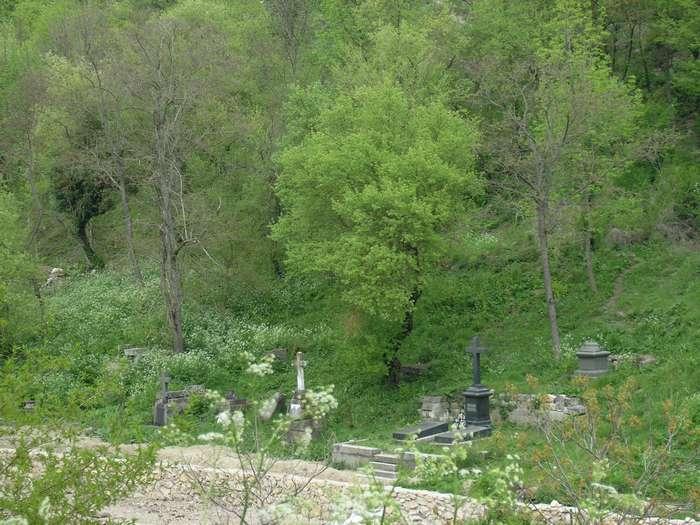 издалека могилы вревских