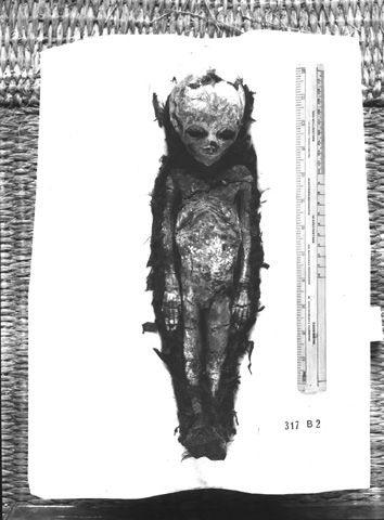 фараон2