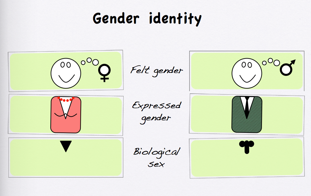 psychology gender identity and colapinto Gender identity: creating a supportive school culture  identity in adult life (colapinto,  and gender identity will be invoked.
