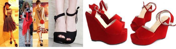 shoe 49