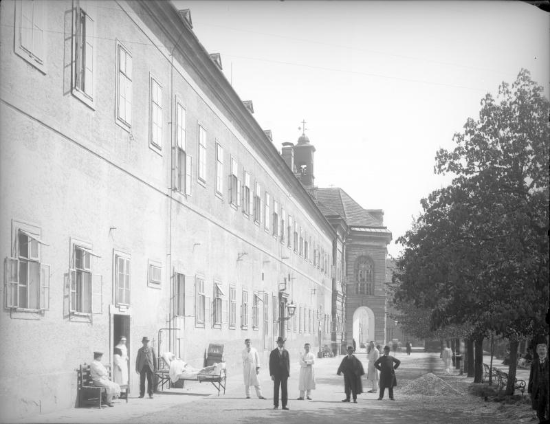 1898. Массовая чумная паника в Вене и последняя жертва чумы.