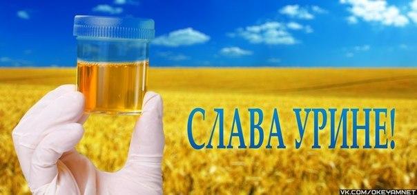 slava_urine